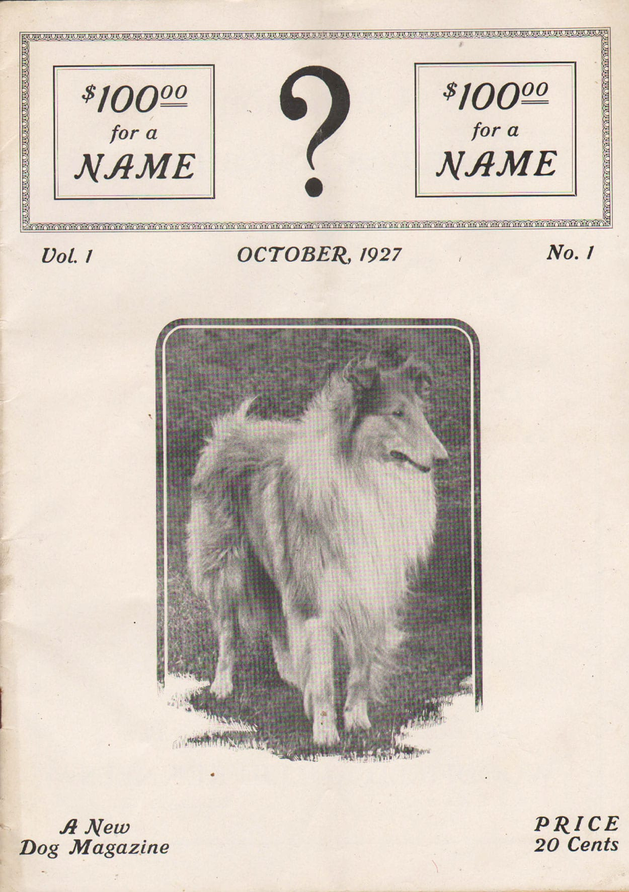 ?: A New Dog Magazine