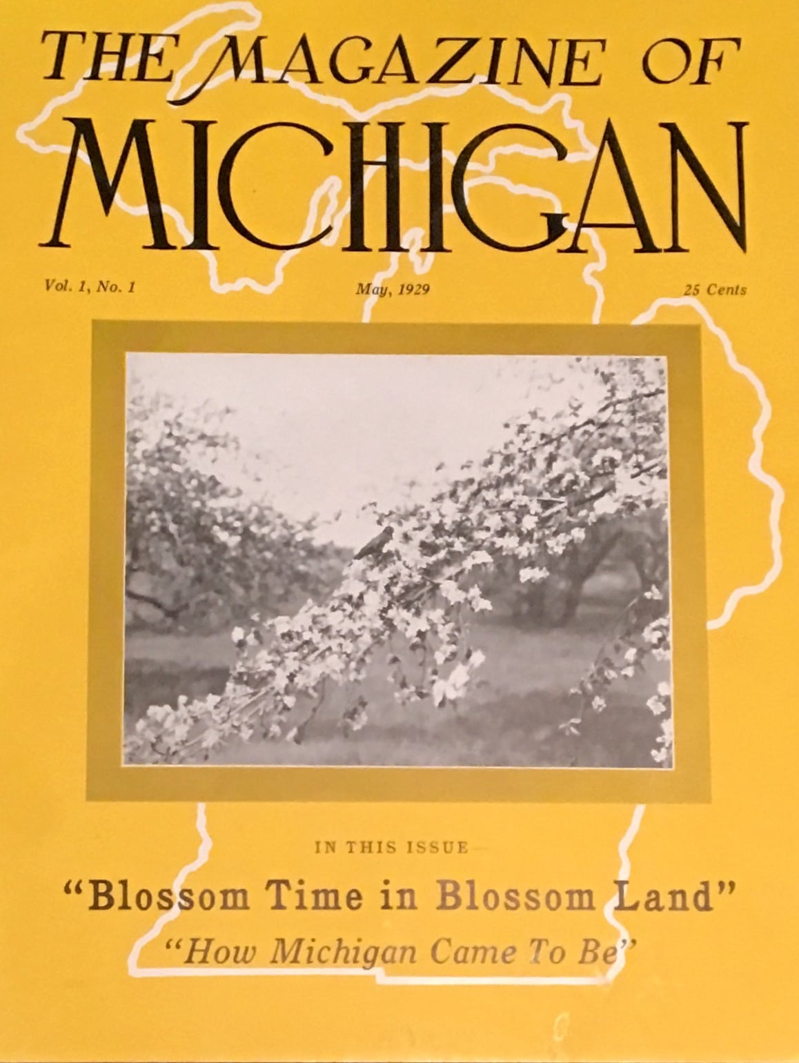 Magazine of Michigan