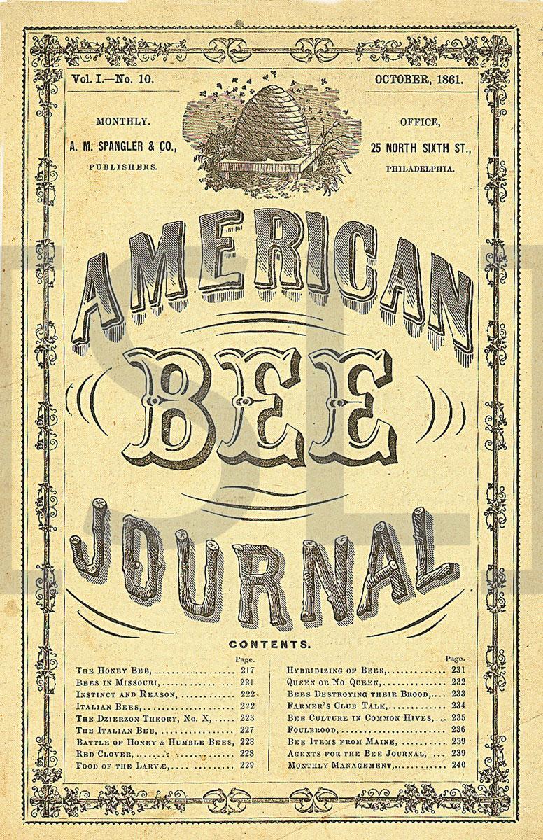 American Bee Journal