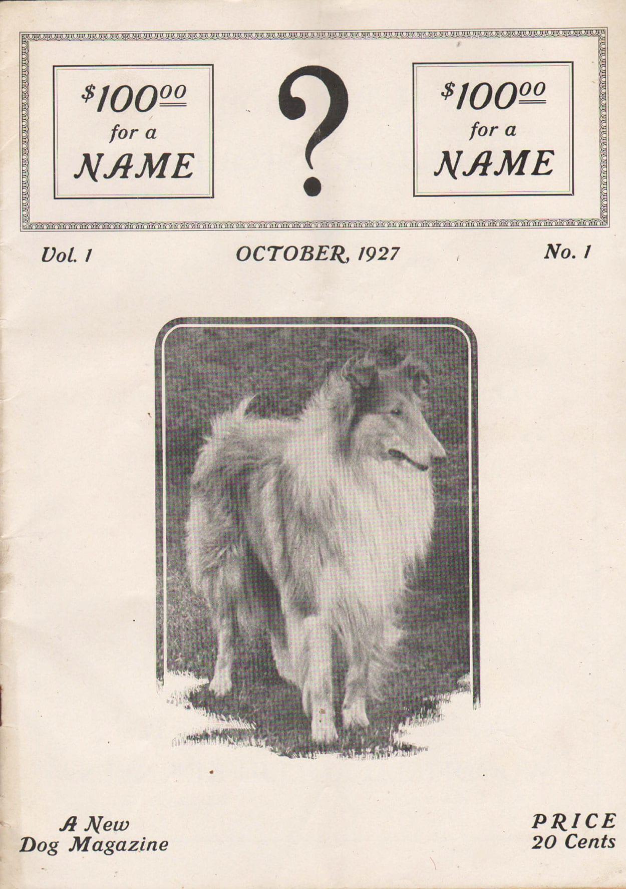 ?: A New Dog Magazine