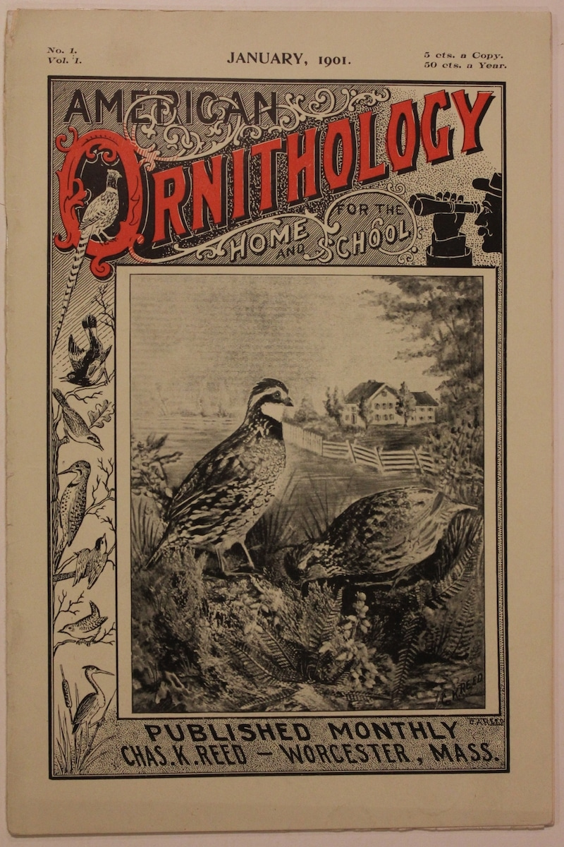 American Ornithology, For the Home and School