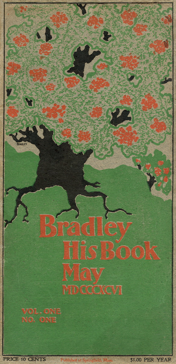 Bradley His Book