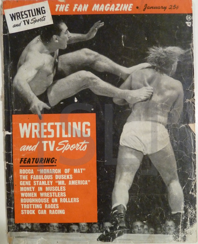Wrestling and TV Sports
