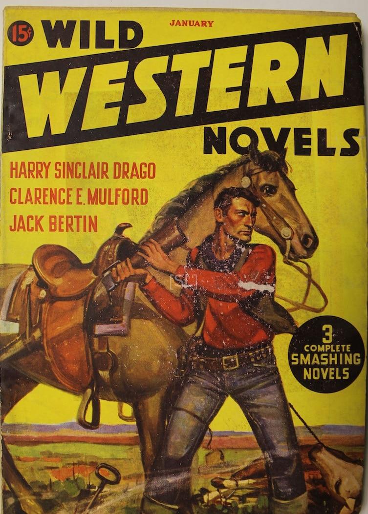 Wild Western Novels
