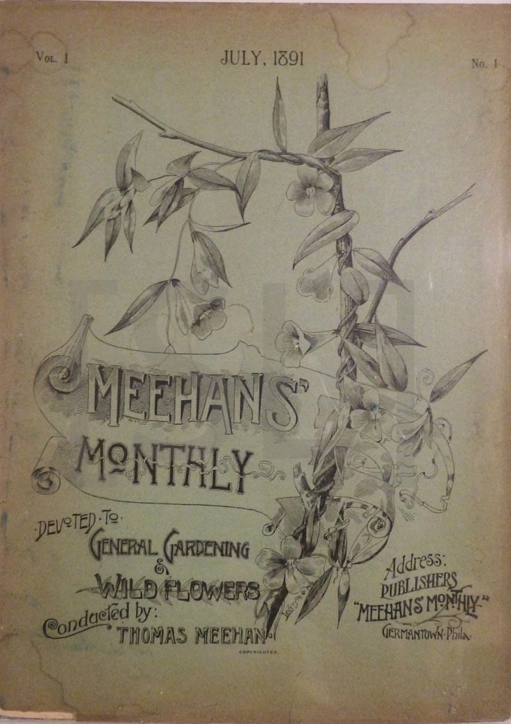 Meehan's Monthly